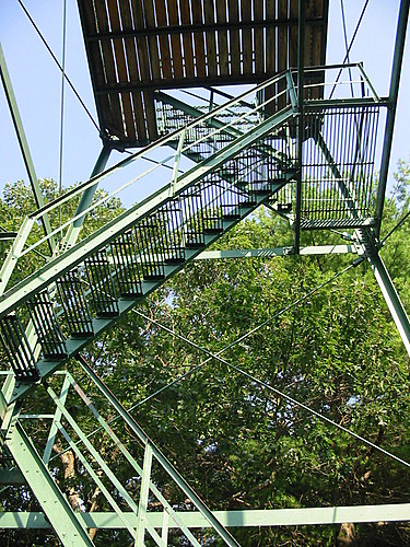 Fire tower on Mount Tom