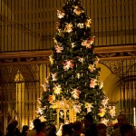 Mondays are for dreaming: The Angel Tree