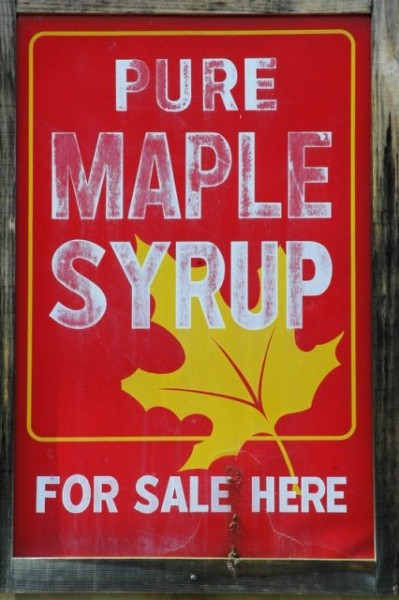 08.12.09_Maple_syrup