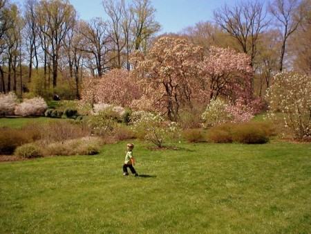 Mondays are for dreaming: Spring at Winterthur