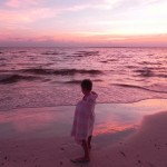 Teddy on Fort Myers Beach at sunset