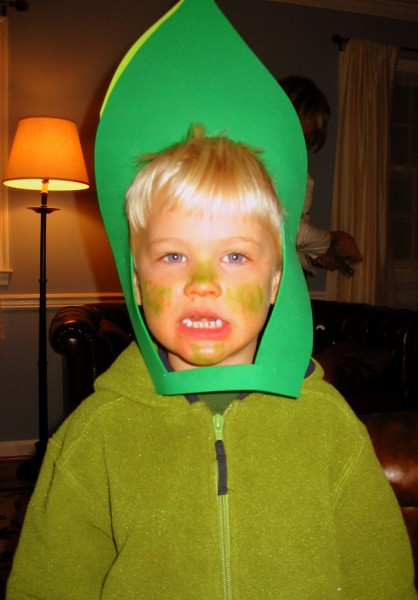 Blade of grass Halloween costume