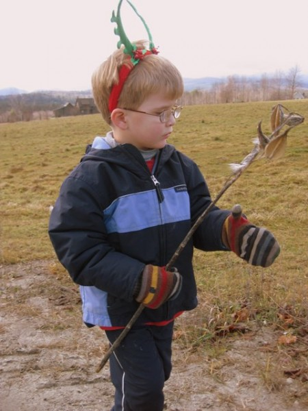 Finding a milkweed pod on the Common Road