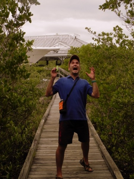 Matt sees a spider in the mangrove forest