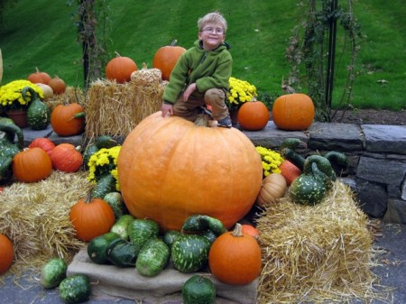 Sitting on a giant pumpkin at Longwood Gardens