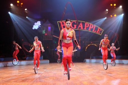 See the Big Apple circus for less