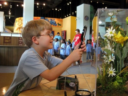 Exploring nature at the Delaware Children's Museum