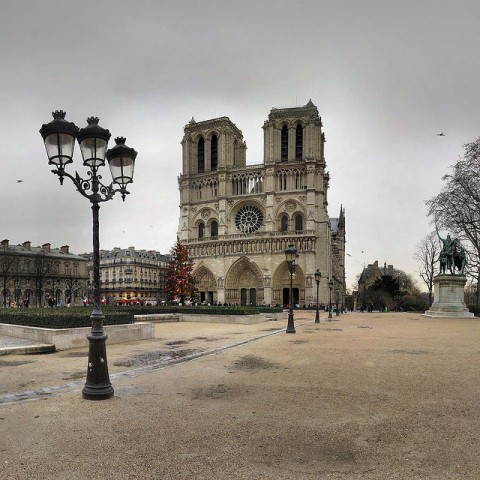 Notre Dame Cathedral at Christmas