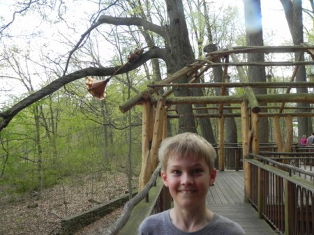 Enjoying a treehouse at Longwood Gardens