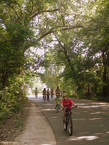 Bike path through the University of Wisconsin Arboretum