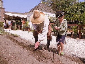 Planting turnips in the colonial garden at Williamsburg