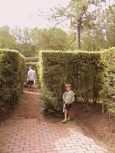 Hedge maze in Colonial Williamsburg