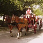 Wagon in Colonial Williamsburg