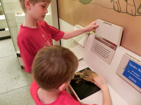 Checking out tools from Ancient Greece at the Penn Museum