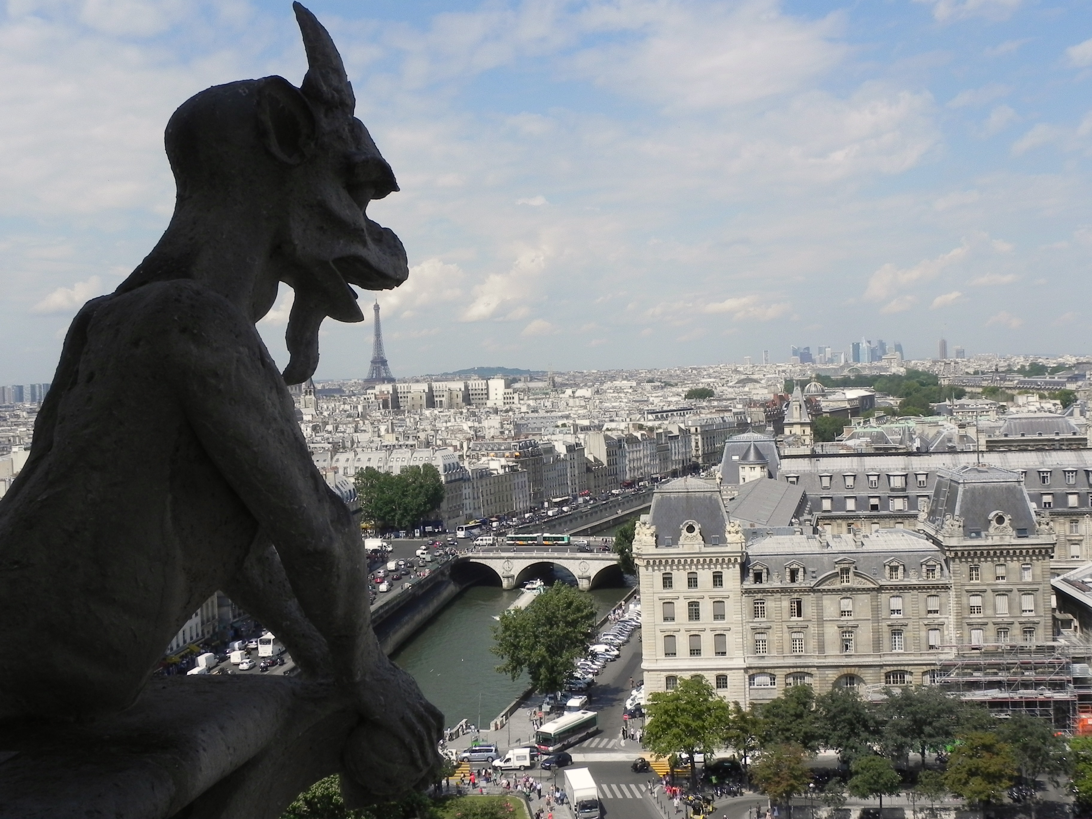 So just what's atop notre dame cathedral in paris