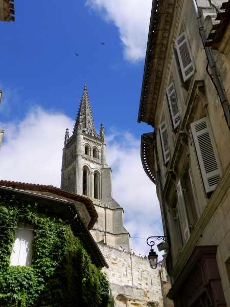 Birds soaring by the Saint-Emilion bell tower