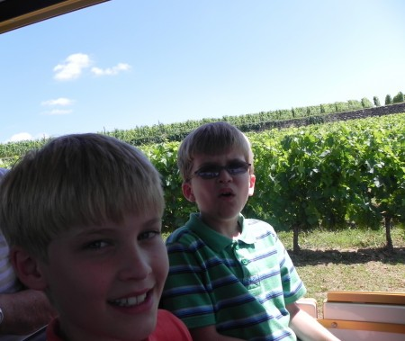 Crabby boys on the Saint-Emilion Petit Train