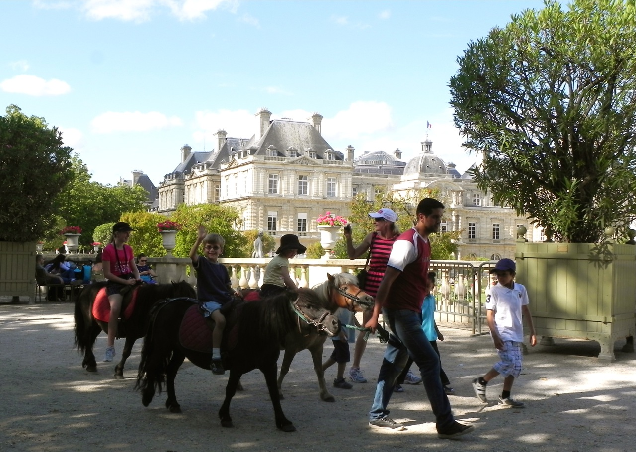 Best of france ponies in le jardin du luxembourg for Jardin du luxembourg