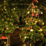 Children's trees in the Longwood Gardens Conservatory