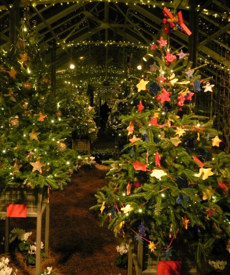 Stars and joy at Longwood Gardens during the 2012 holiday season