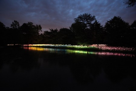 Longwood Garden Field of Light, Photo by Mark Pickthall
