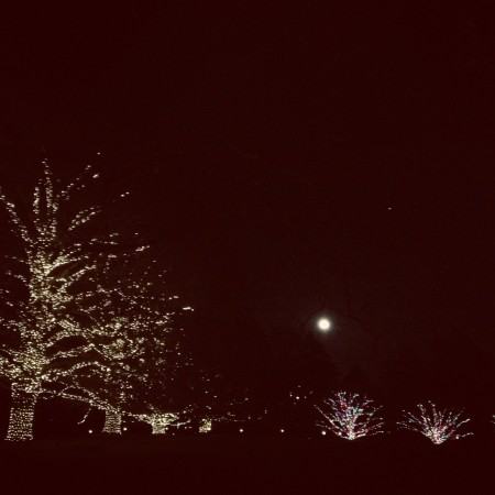A full moon adds extra sparkle to holiday lights at Longwood Gardens