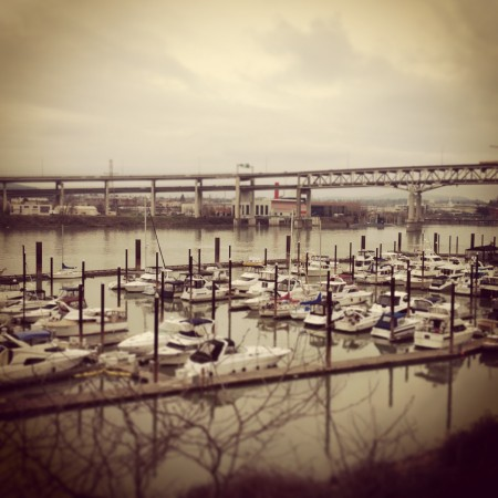 A view of the marina from the Kimpton Riverplace Hotel