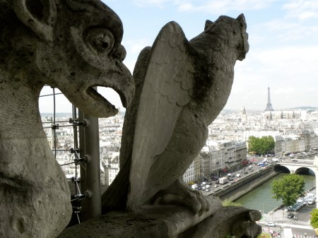 Seeing Paris from a gargoyle's eye view - I'm a little jealous!