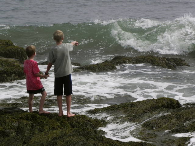 The boys loved getting close to the waves on Peaks Island, Maine