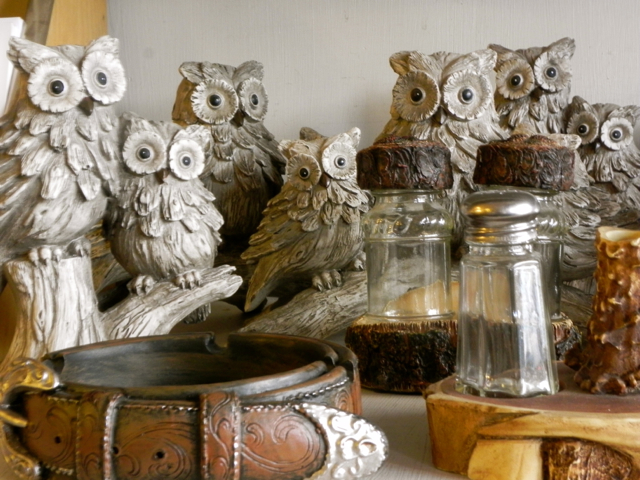 Family fun in truckee for Owl fish store